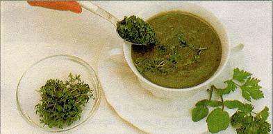 Как сварить суп с кольраби